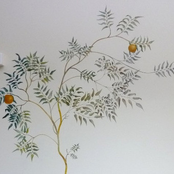 Figos medis (sieninė tapyba) Prodentum klinika http://www.prodentum.lt/lt
