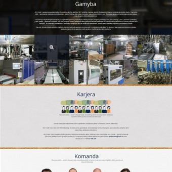 WEB / GRAFIKOS dizaineris / Ernestas Martinkus / Darbų pavyzdys ID 22016