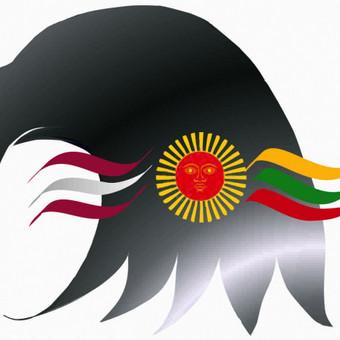Logo NGO Falcon