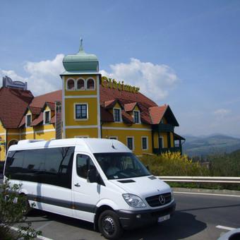 Keleivių pervežimas mikroautobusais Lietuvoje ir užsienyje / Lina Česonytė / Darbų pavyzdys ID 29361