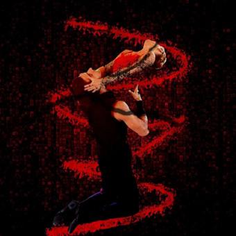Šokiai, šokių pamokos / Justas / Darbų pavyzdys ID 30126