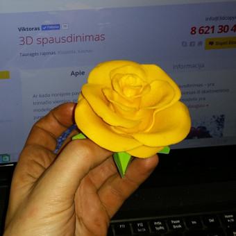 3D Spausdinimas / Viktoras / Darbų pavyzdys ID 30964