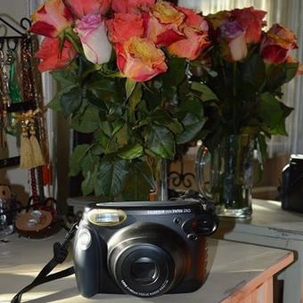 Momentinio fotoaparato nuoma / Kristina / Darbų pavyzdys ID 36402