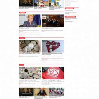 Web dizainas www.skaidripolitika.org