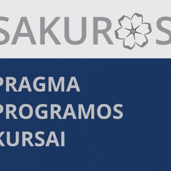Turintiems buhalterinės apskaitos pagrindus ir norintiems išmokti dirbti su verslo apskaitos programa PRAGMA rengiame kursus