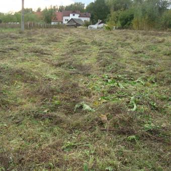 Didelių plotų aukštos žolės pjovimo darbai