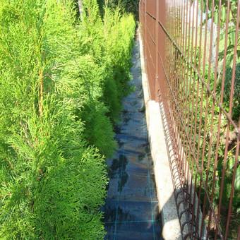 Gyvatvorės įrengimas, agroplėvelės paklojimas nuo piktžolių