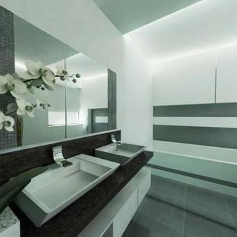 Vonios kambario vizualizacija