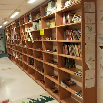 Lentynos mokyklos bibliotekai.