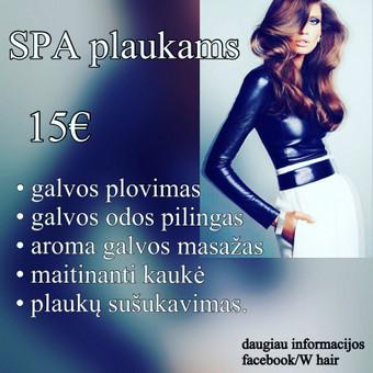 SPA PLAUKAMS