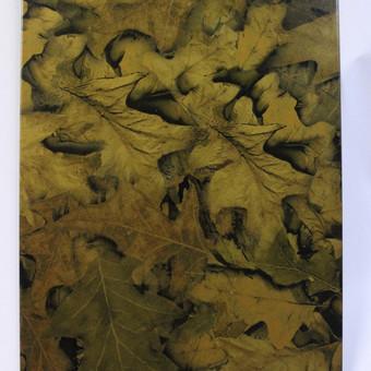 Hidrografika / Jonas Waterprint / Darbų pavyzdys ID 53915