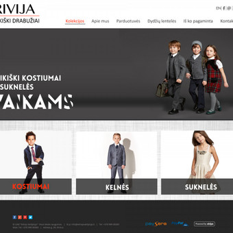 Internetinių svetainių kūrimas Vilniuje / Bona Solutions / Darbų pavyzdys ID 56901