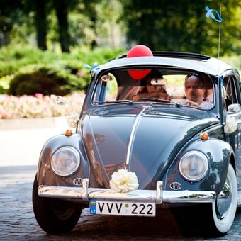 VW vabalas, pilkas, 1963 m.