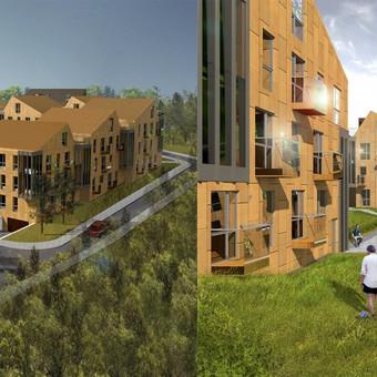 Gyvenamųjų namų kvartalo projektinis pasiūlymas, Kreivajame skg.