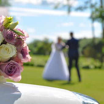 Vestuvių ir kitų progų fotografavimas Panevėžyje / Erika Nėnė / Darbų pavyzdys ID 388997