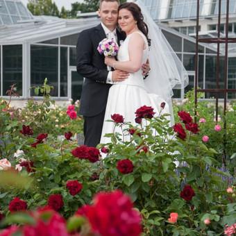 Vestuvių ir kitų progų fotografavimas Panevėžyje / Erika Nėnė / Darbų pavyzdys ID 389003