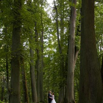 Vestuvių ir kitų progų fotografavimas Panevėžyje / Erika Nėnė / Darbų pavyzdys ID 389007