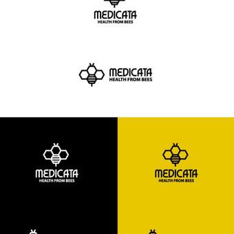 Logotipų, pakuotės ir firminio stiliaus kūrimas / Deividas / Darbų pavyzdys ID 396329