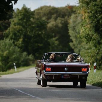 Mustang nuoma Lietuvoje / Mustang rent Lithuania / Darbų pavyzdys ID 397311