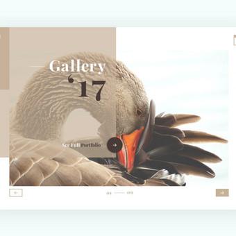Web ir Grafikos Dizainas / WordPress Svetainės / Artūras Aranin / Totus Studio / Darbų pavyzdys ID 398075