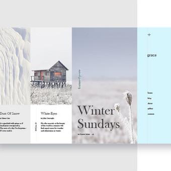 Web ir Grafikos Dizainas / WordPress Svetainės / Artūras Aranin / Totus Studio / Darbų pavyzdys ID 398083