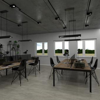 3D vizualizacijų rengimas/3D planai/interjero projektavimas / Agnė / Darbų pavyzdys ID 401591