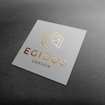 Įmonės firminis stilius / Dizaino pasaulis / Darbų pavyzdys ID 402341