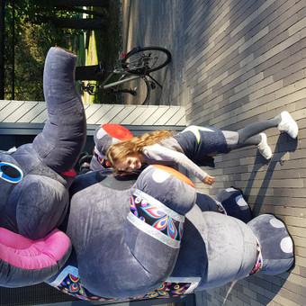 Trijų metrų ūgio dramblys Jūsų šventei! / UAB Aktyvistas / Darbų pavyzdys ID 404233