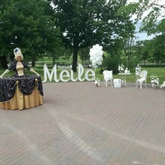 Vestuvių, švenčių dekoravimas / Giedrė Jankauskienė / Darbų pavyzdys ID 406403