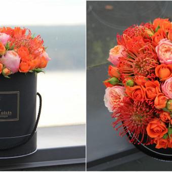 Memelio gėlės / Silvija / Darbų pavyzdys ID 407879