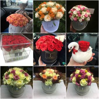 Memelio gėlės / Silvija / Darbų pavyzdys ID 407883