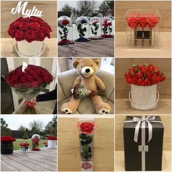 Memelio gėlės / Silvija / Darbų pavyzdys ID 407917