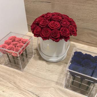 Memelio gėlės / Silvija / Darbų pavyzdys ID 407919