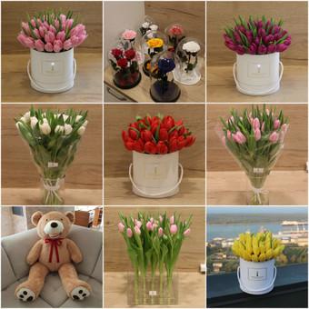 Memelio gėlės / Silvija / Darbų pavyzdys ID 407933