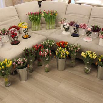 Memelio gėlės / Silvija / Darbų pavyzdys ID 407935