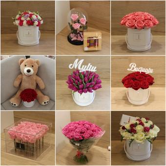 Memelio gėlės / Silvija / Darbų pavyzdys ID 407937