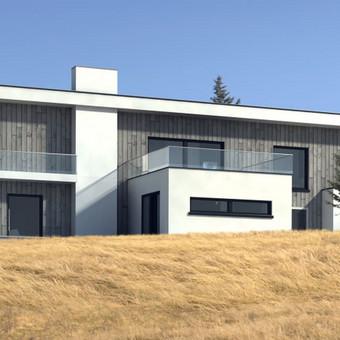Namų projektavimas ir statyba / Andrius Pėtnyčia / Darbų pavyzdys ID 410095
