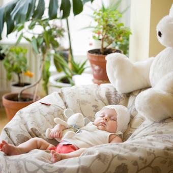 Sunny Bunny Photography / Sunny Bunny Photography / Darbų pavyzdys ID 410499