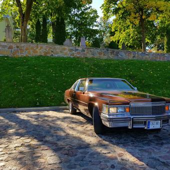 Tobulas Cadillac ir kiti / Pirmyn į praeitį / Darbų pavyzdys ID 410605