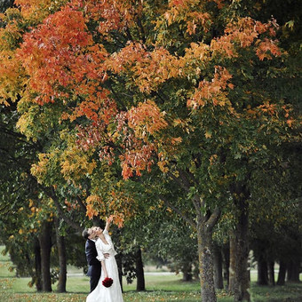SL fotografija - Vestuvių fotografija / Sigitas Lukoševičius / Darbų pavyzdys ID 411303