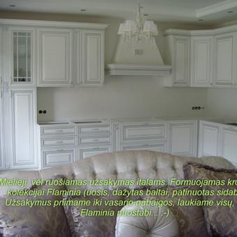 """Virtuvės baldai. Vonios baldai. Akmuo. UAB """"Forestė"""" / Dizainerė Audronė Baldai-Interjeras / Darbų pavyzdys ID 411429"""