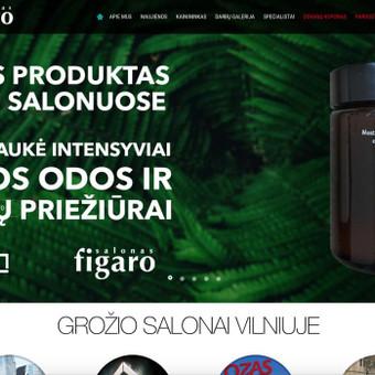 Internetinių Svetainių Kūrimas I www.ITarea.lt / Nikita Rancevas / Darbų pavyzdys ID 413163