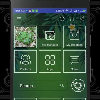 Android - Web - Blockchain aplikacijų kūrėjas / Tomas / Darbų pavyzdys ID 413295