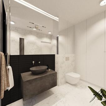Interjero projektavimas / Flamingo interjero namai / Darbų pavyzdys ID 414361