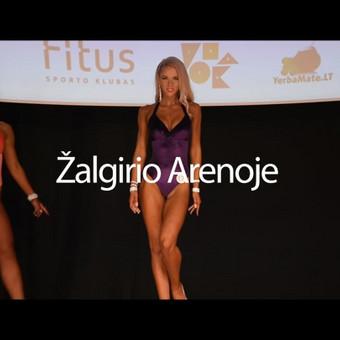 MAYREC.LT   Video / Marek Germanovich / Darbų pavyzdys ID 415887
