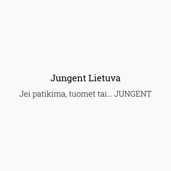 Junior komunikacijos ekspertas. 4 knygų autorius. Reklama. / Lukas Petrauskas / Darbų pavyzdys ID 419569