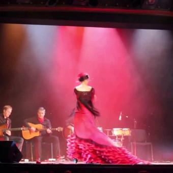 Ispaniška,latina,samba muzika / Profesionalūs gitararistai - jūsų šventėse. / Darbų pavyzdys ID 421981