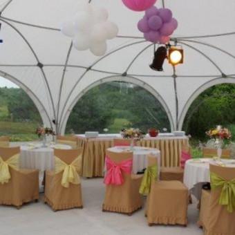 PAVILJONŲ, baldų, apšvietimo, dekoracijų nuoma  Jūsų šventei / VIP paviljonai / Darbų pavyzdys ID 422531