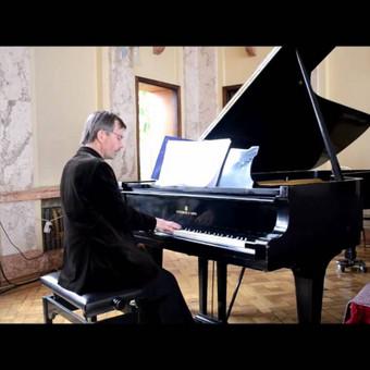 Gyva solo akordeono ir (ar) pianino muzika / Relax / Darbų pavyzdys ID 423511