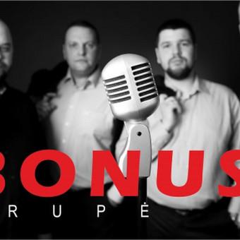 """Grupė """"BONUS"""" / grupė """"BONUS"""" / Darbų pavyzdys ID 428581"""